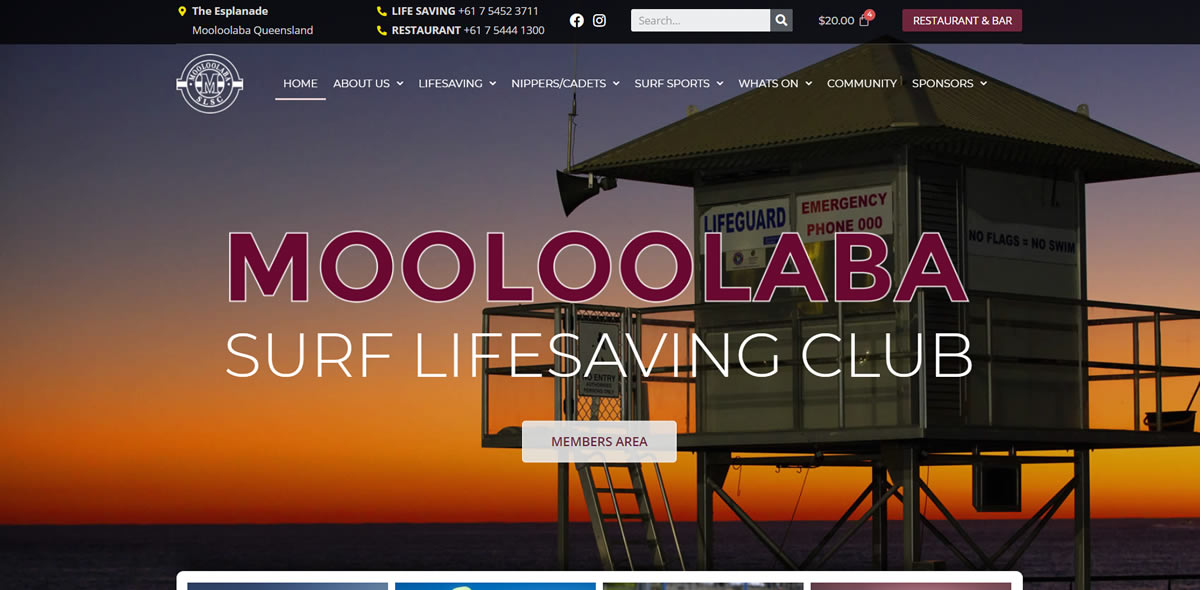 A selection of WordPress Website from our Portfolio